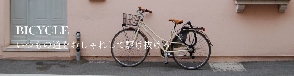bicycle_0215001