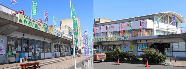 神奈川のオススメのマルシェ!三崎港はやっぱりマグロ! うらりマルシェ