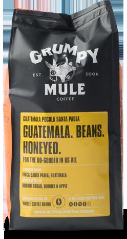 海外の輸入コーヒー GUATEMALA SANTA PAULA NATURAL コーヒー